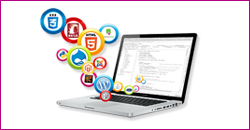 Web Development in Noida